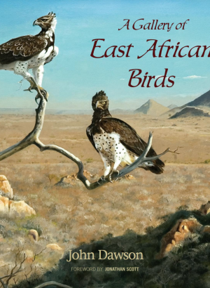 A Gallery of East African Birds