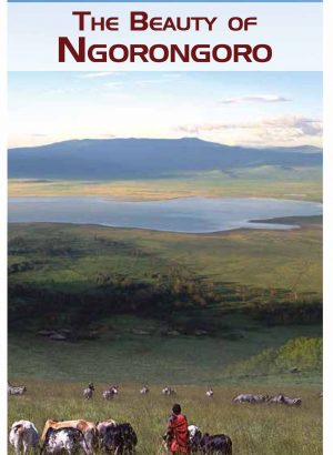 THE BEAUTY OF NGORONGORO