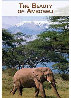 The Beauty of Amboseli