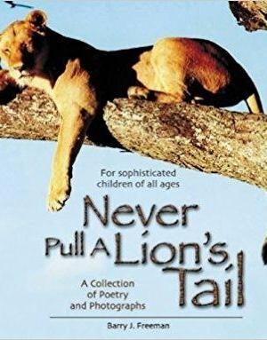 NEVER PULL A LION'S TAIL